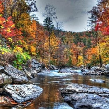 Top 10 Things to do this Fall in Pigeon Forge and Gatlinburg!