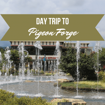 Day Trip to Pigeon Forge: Must Do's
